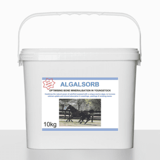 bred-thorough-algalsorb-horse-supplement.jpg